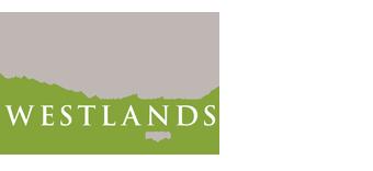Westlands Dental Studio - Lanchester